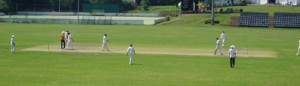 cricket-field